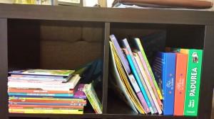 Cărți pentru copii (2 ani – 2 ani și jumătate)