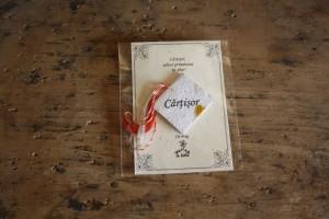 Cartisor2