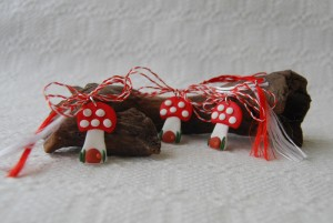 martisoare-Handmade-Ancasiada-ciuperci