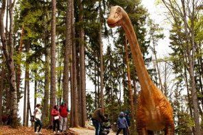 22 de lucruri de făcut cu copiii la Dino Parc Râșnov, lângă Brașov (p)